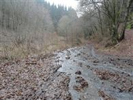 Erosion on forest roads